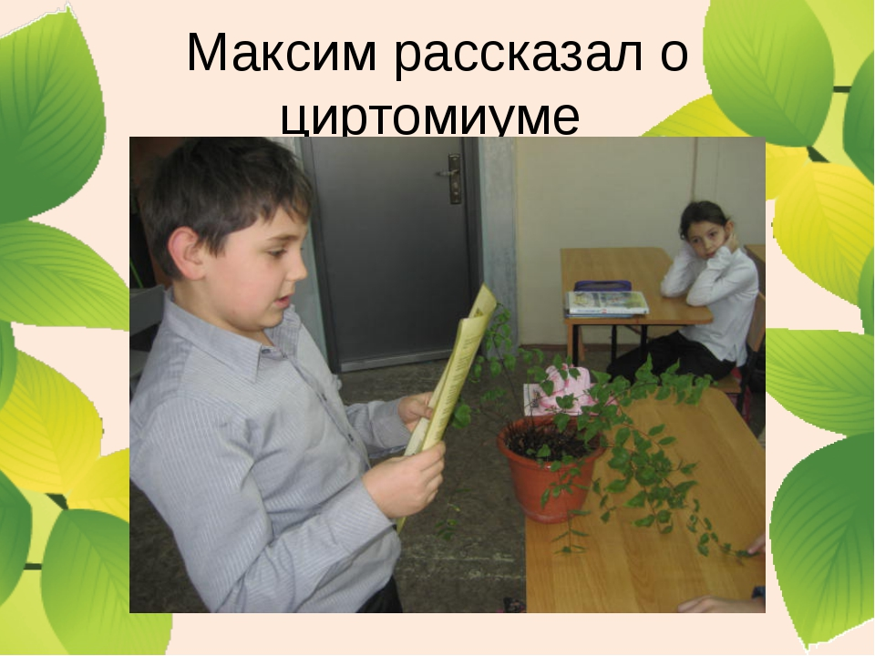 Максим рассказал о циртомиуме