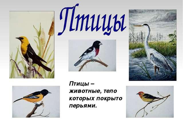 Птицы – животные, тело которых покрыто перьями.