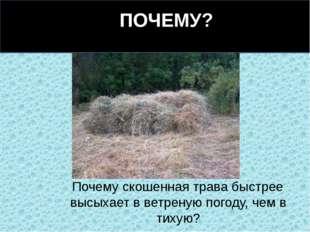 Почему скошенная трава быстрее высыхает в ветреную погоду, чем в тихую? ПОЧЕ