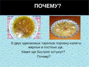 В двух одинаковых тарелках поровну налиты жирные и постные щи. Какие щи быст