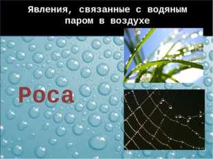 Явления, связанные с водяным паром в воздухе Роса