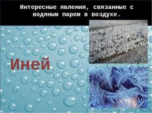 Интересные явления, связанные с водяным паром в воздухе. Иней