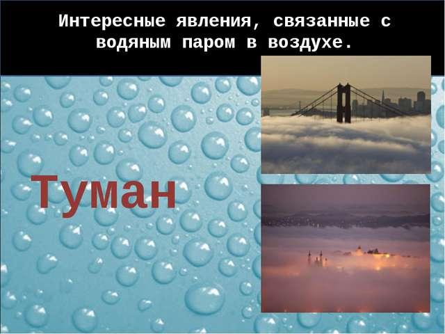 Интересные явления, связанные с водяным паром в воздухе. Туман
