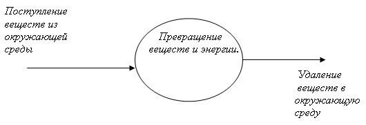 http://festival.1september.ru/articles/566874/img1.jpg