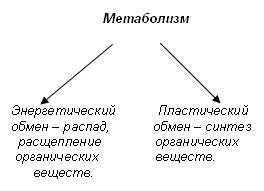 http://festival.1september.ru/articles/566874/img2.jpg