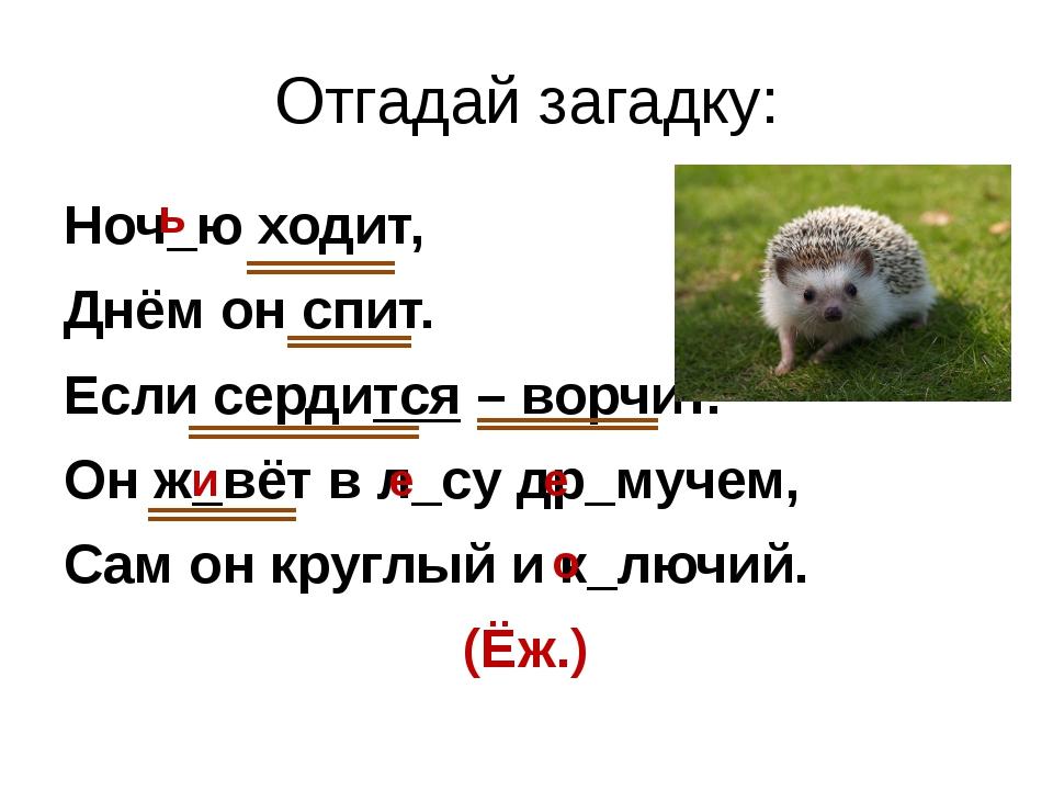 Отгадай загадку: Ноч_ю ходит, Днём он спит. Если сердится – ворчит. Он ж_вёт...