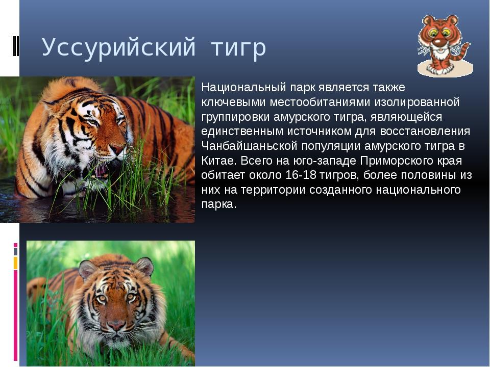 Уссурийский тигр Национальный парк является также ключевыми местообитаниями и...