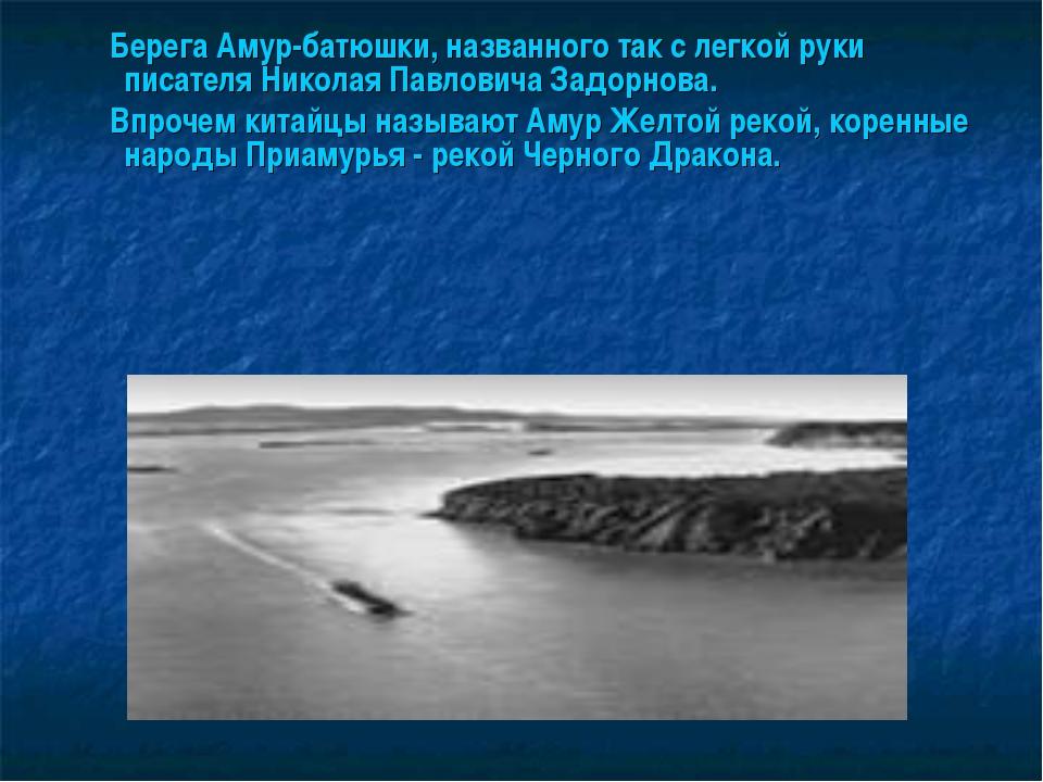 Берега Амур-батюшки, названного так с легкой руки писателя Николая Павловича...