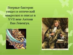Впервые бактерии увидел в оптический микроскоп и описал в XVII веке Антони Ва