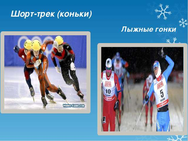 Шорт-трек (коньки) Лыжные гонки