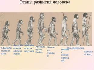 Кроманьонец Неандерталец человек прямоходящий АфараАвстролопитек Австролопит