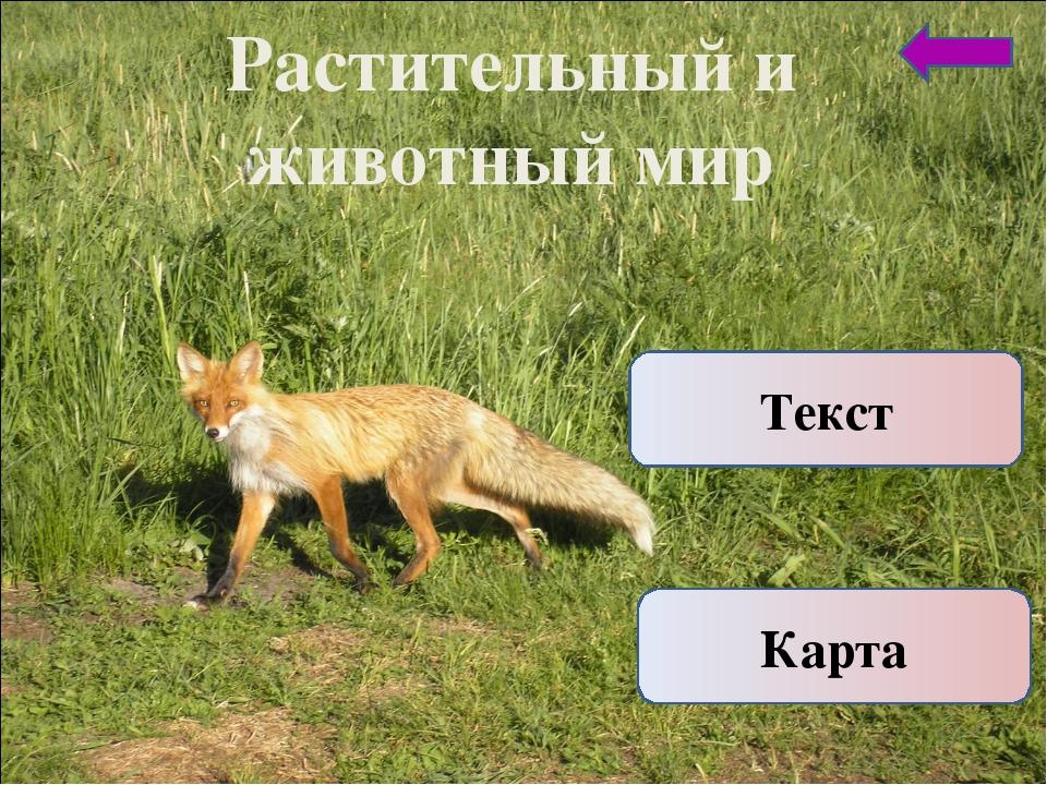 Растительный и животный мир Карта Текст