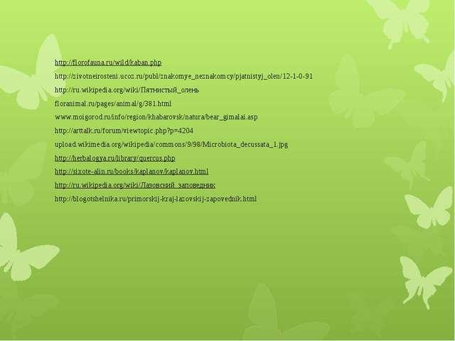 http://florofauna.ru/wild/kaban.php http://zivotneirosteni.ucoz.ru/publ/znako...
