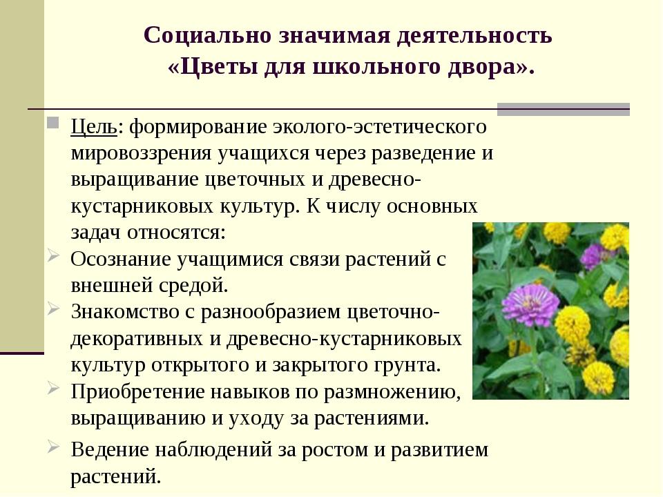 Социально значимая деятельность «Цветы для школьного двора».  Цель: формиров...