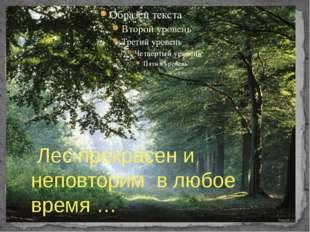 Лес прекрасен и неповторим в любое время …