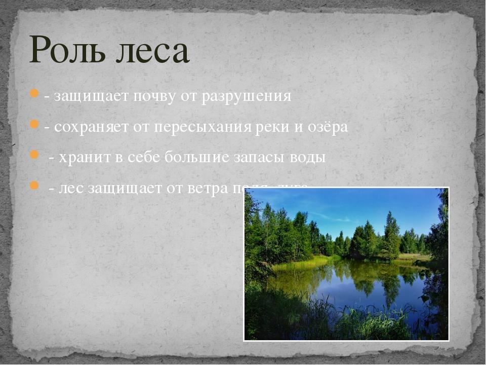- защищает почву от разрушения - сохраняет от пересыхания реки и озёра - хран...