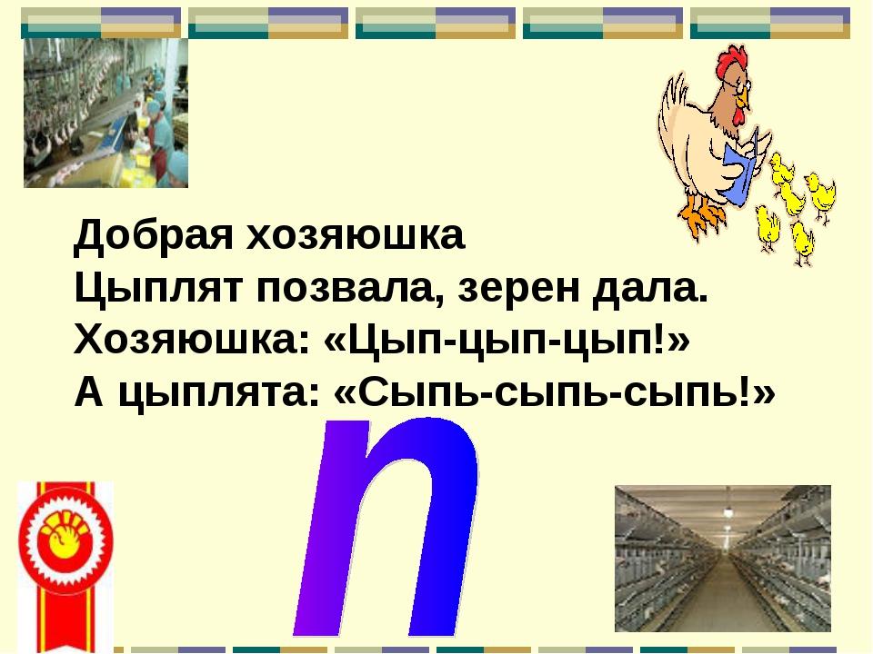 Добрая хозяюшка Цыплят позвала, зерен дала. Хозяюшка: «Цып-цып-цып!» А цыплят...