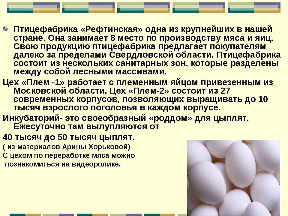 Птицефабрика «Рефтинская» одна из крупнейших в нашей стране. Она занимает 8 м...