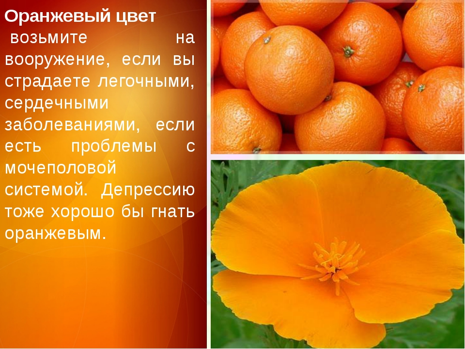 Оранжевый цвет возьмите на вооружение, если вы страдаете легочными, сердечны...