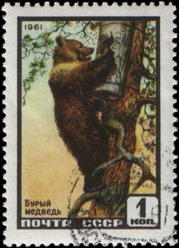 http://markimira.ru/upload/iblock/1cf/1961_2535.jpg