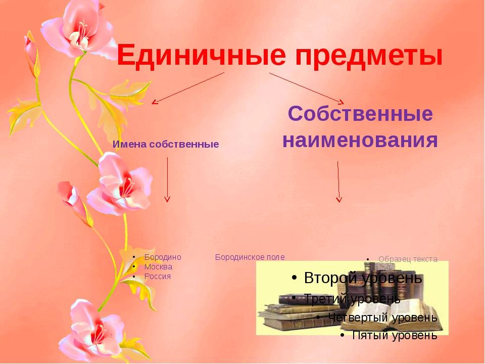 Единичные предметы Имена собственные Бородино Бородинское поле Москва Россия...