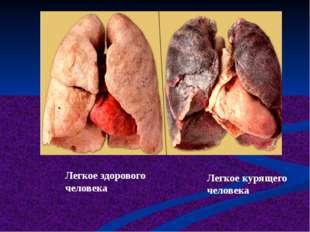 Легкое здорового человека Легкое курящего человека