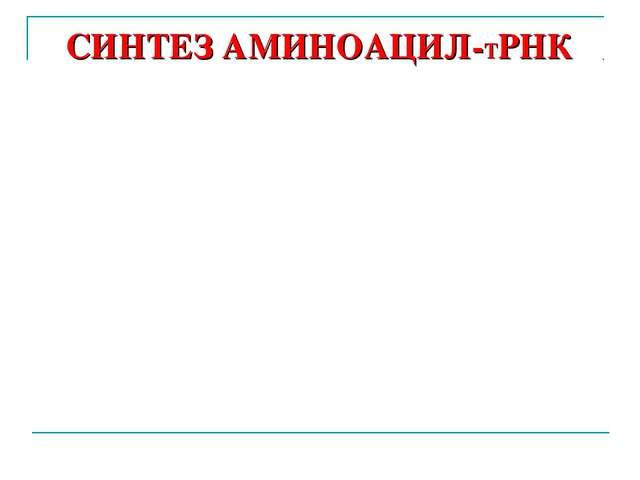 СИНТЕЗ АМИНОАЦИЛ-ТРНК