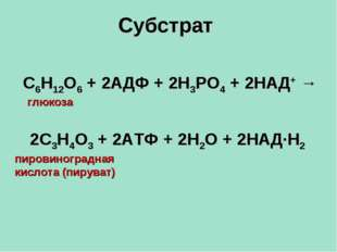 Субстрат С6Н12О6 + 2АДФ + 2Н3РО4 + 2НАД+ → глюкоза 2С3Н4О3 + 2АТФ + 2Н2О + 2Н