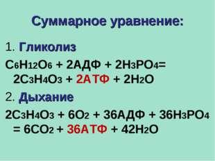 Суммарное уравнение: 1. Гликолиз С6Н12О6 + 2АДФ + 2Н3РО4= 2С3Н4О3 + 2АТФ + 2Н