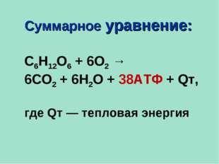 Суммарное уравнение: С6Н12О6 + 6О2 → 6СО2 + 6Н2О + 38АТФ + Qт,  где Qт — теп
