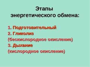 Этапы энергетического обмена: 1. Подготовительный 2. Гликолиз (бескислородное