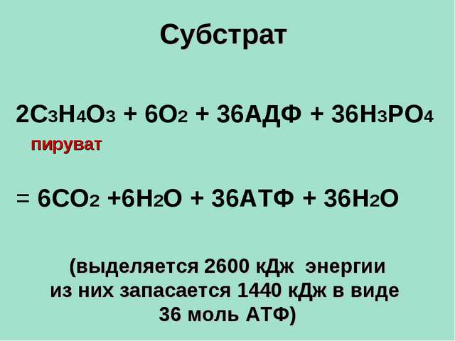 Субстрат (выделяется 2600 кДж энергии из них запасается 1440 кДж в виде 36 мо...
