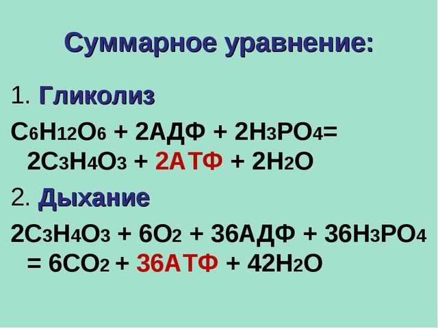 Суммарное уравнение: 1. Гликолиз С6Н12О6 + 2АДФ + 2Н3РО4= 2С3Н4О3 + 2АТФ + 2Н...