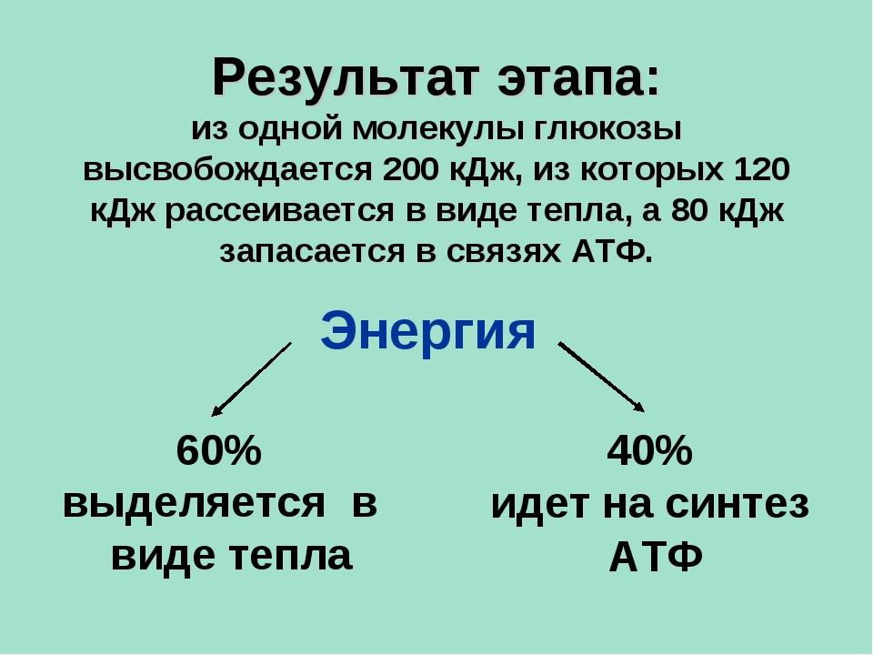 60% выделяется в виде тепла 40% идет на синтез АТФ Энергия Результат этапа: и...