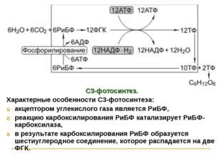 С3-фотосинтез. Характерные особенности С3-фотосинтеза: акцептором углекислого
