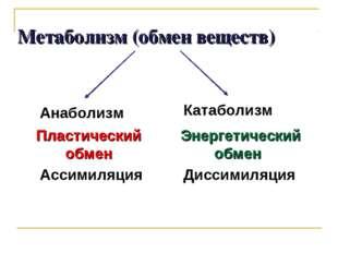 Метаболизм (обмен веществ) Пластический обмен Ассимиляция Анаболизм Энергети