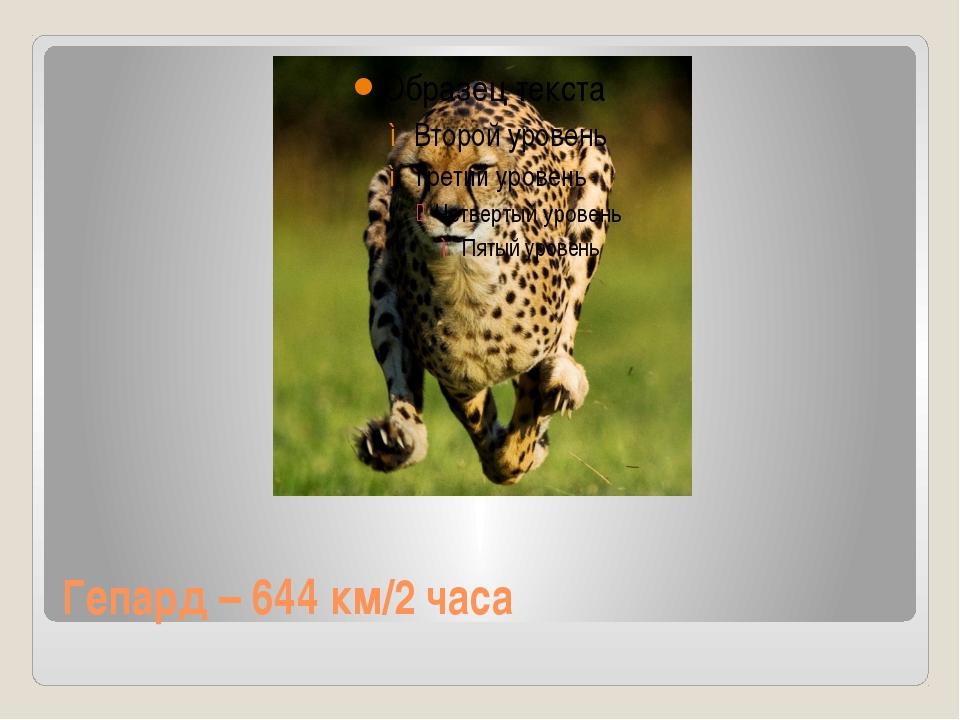 Гепард – 644 км/2 часа