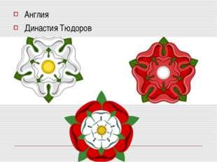 Англия Династия Тюдоров