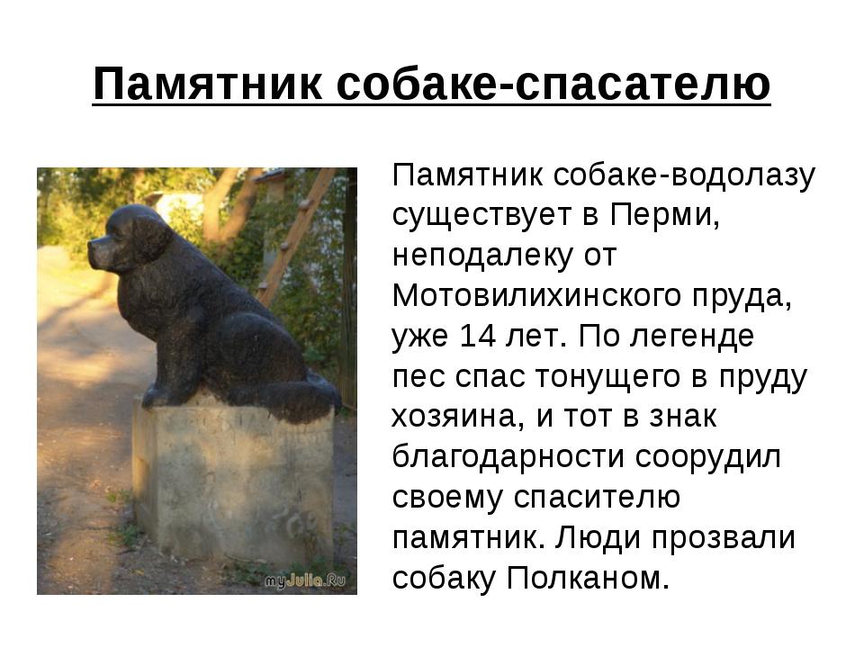 Памятник собаке-спасателю Памятник собаке-водолазу существует в Перми, непод...