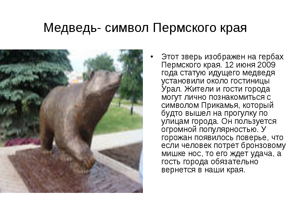Медведь- символ Пермского края Этот зверь изображен на гербах Пермского края....