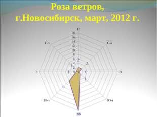 Роза ветров, г.Новосибирск, март, 2012 г.