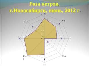 Роза ветров, г.Новосибирск, июнь, 2012 г.