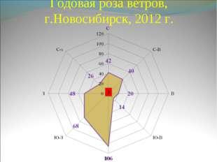 Годовая роза ветров, г.Новосибирск, 2012 г. 3