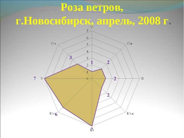 Роза ветров, г.Новосибирск, апрель, 2008 г.