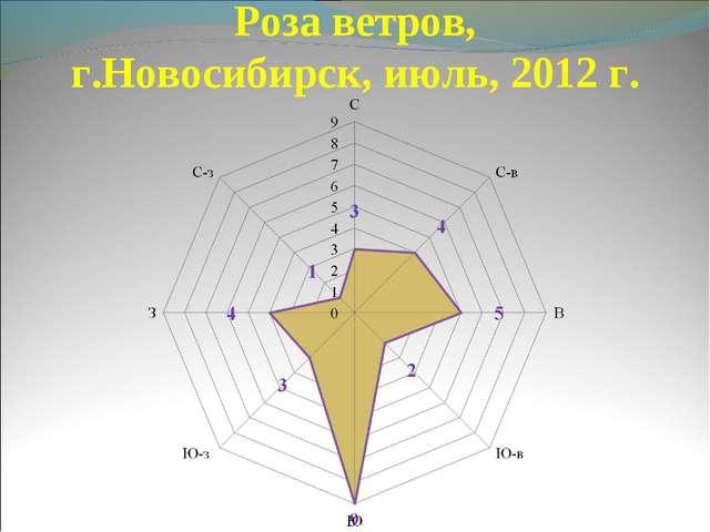 Роза ветров, г.Новосибирск, июль, 2012 г.