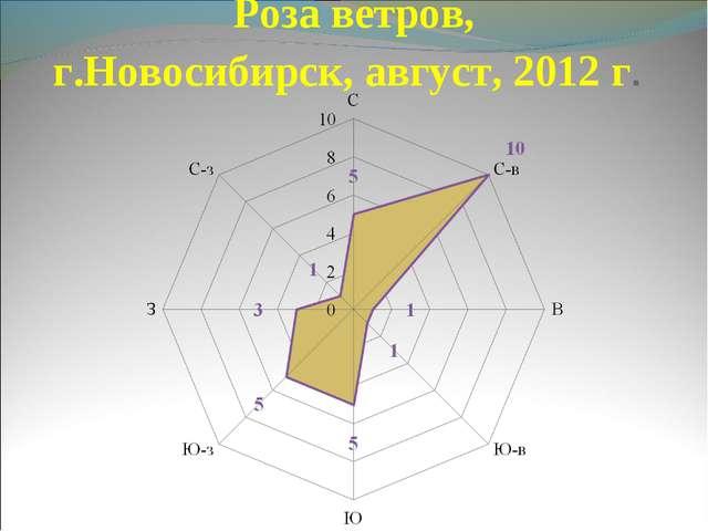 Роза ветров, г.Новосибирск, август, 2012 г.