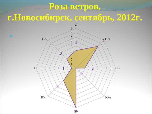 Роза ветров, г.Новосибирск, сентябрь, 2012г.