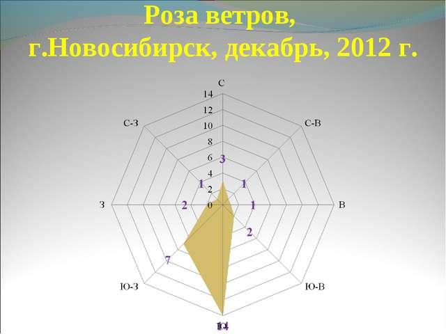 Роза ветров, г.Новосибирск, декабрь, 2012 г.