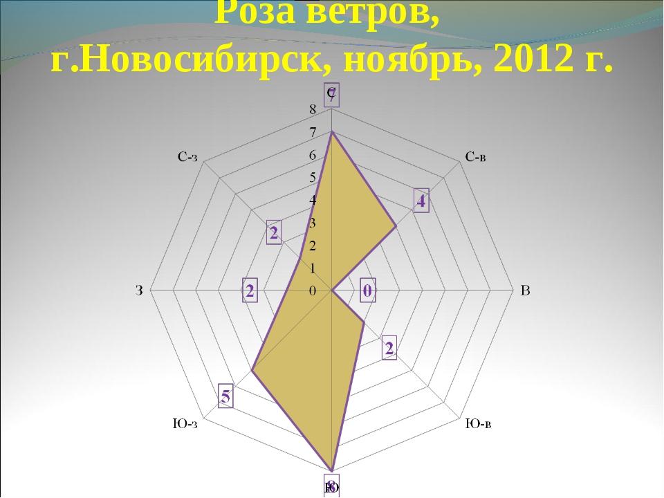 Роза ветров, г.Новосибирск, ноябрь, 2012 г.
