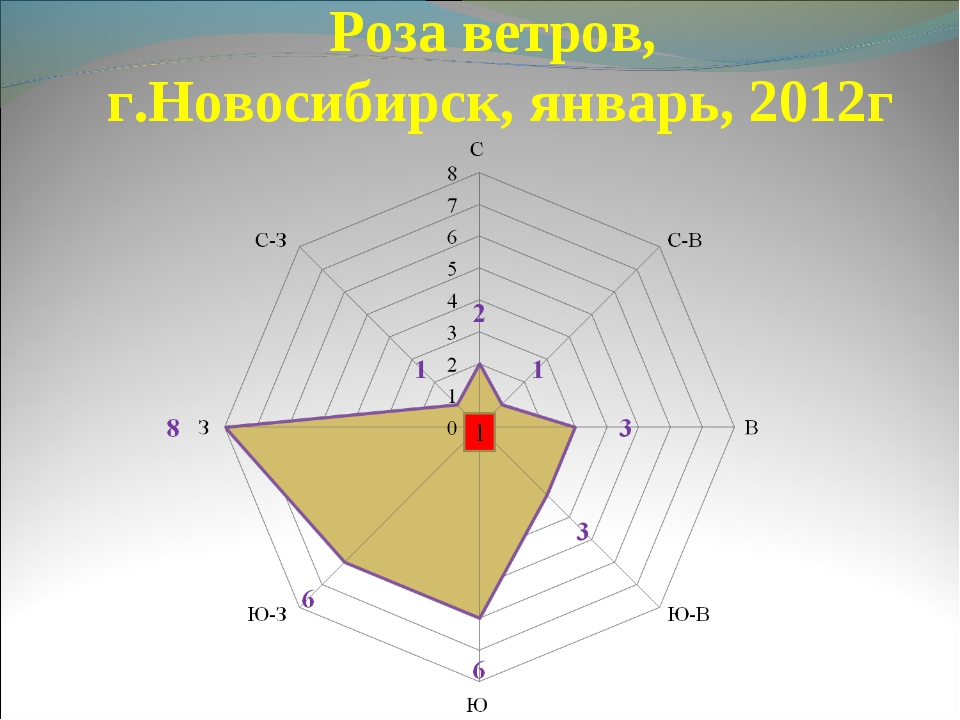 Роза ветров, г.Новосибирск, январь, 2012г
